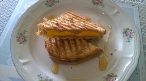 Almond Butter and Mango Sandwich7